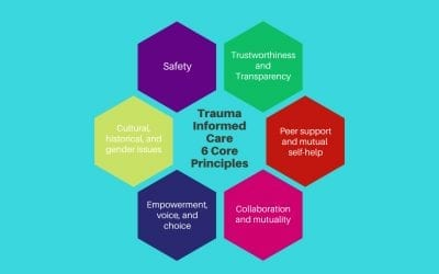 What is Trauma Informed Care and Why is it Important?